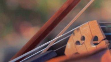 Man plays violin outdoors — Stock Video