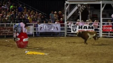 Rodeo event in Oakley, Utah — Stock Video