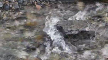 Rushing water in stream — Stock Video