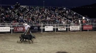 Team Roping At The Rodeo — Stock Video