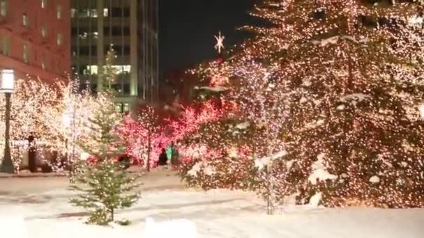 Gente disfrutando de las luces de Navidad — Vídeo de stock