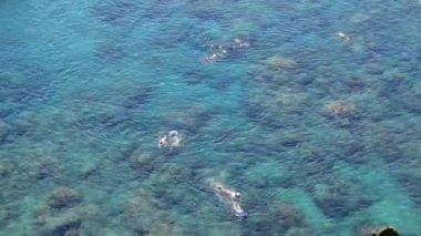 Menschen, die über den Riffen Schnorcheln — Stockvideo