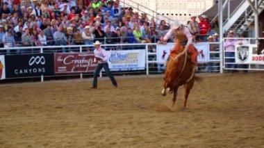 Cowboys ride saddleback — Stock Video