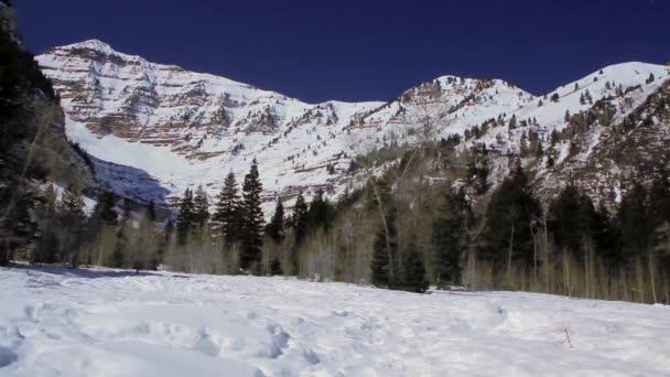 Gama de la montaña cubierta de nieve — Vídeo de stock