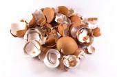 破的卵壳 — 图库照片