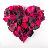 Heart Shaped Dying Rose Petal Pattern — Stock Photo