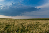 Hay Grass and Stormy Sky — Stock Photo