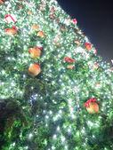 Big Christmas tree — ストック写真