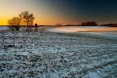Winter field sunset — Stock Photo