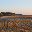 Plowed field panoramic landscape — Stock Photo #67923059