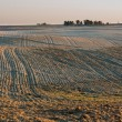Plowed field landscape — Stock Photo #67923575