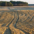Plowed field landscape — Stock Photo #67923705