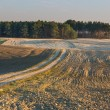 Plowed field landscape — Stock Photo #67924203