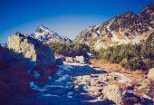 Foto dell'annata del paesaggio delle montagne di tatra — Foto Stock