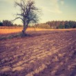Vintage photo of plowed field landscape — Stock Photo #67983943