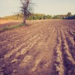Vintage photo of plowed field landscape — Stock Photo #67983983