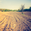 Vintage photo of plowed field landscape — Stock Photo #67984021