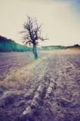 Vintage photo of plowed field landscape — Stock Photo