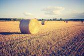 Vintage photo of straw bales on stubble — Stock Photo