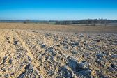 Zaorane pole krajobraz — Zdjęcie stockowe