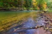 Wildfluss im herbstlichen bunten Wald — Stockfoto