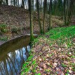 Small river in springtime forest — Stock Photo #69648155