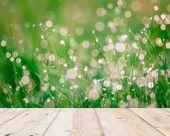 Wet springtime grass with bokeh effect and wooden floo — Photo