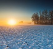 Sunrise over agricultural field. — Stock Photo