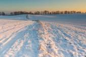 Piękny zimowy krajobraz pola. — Zdjęcie stockowe