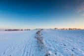 Beautiful winter field landscape. — Stockfoto