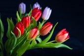 Buquê de tulipas lindas — Fotografia Stock
