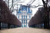 Tuileries Garden - Paris, France — Stock Photo