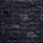 Old brick wall texture - Stock Image — Stock Photo #70630683