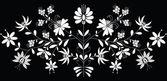 European folk floral pattern in white on black background — Stock Vector