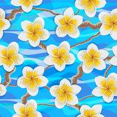 Tropical flowers plumeria — Stock Vector