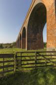 John O'gaunt Viaduct — Stock Photo