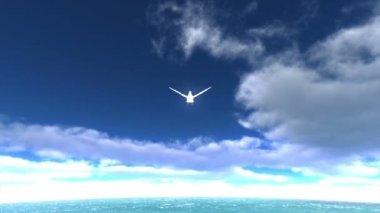 Biały gołąb — Wideo stockowe