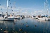 Yacht Club — Stockfoto