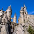 Постер, плакат: Wizarding World of Harry Potter in Universal Studio Osaka Japan