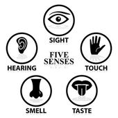 Five senses related vector icon set — Stock Vector