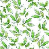 Aquarell Muster Blätter — Stockfoto