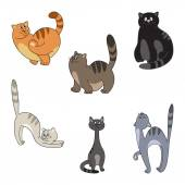 Different cats collection — Stock Vector