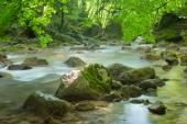 ручей — Стоковое фото