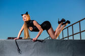 Woman on the roof in a cat costume with a whip — Stock fotografie
