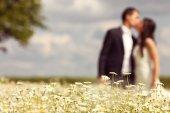 Nevěsta a ženich působícím v oblasti — Stock fotografie