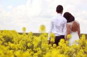 Bride and groom posing in the fields — Stock Photo
