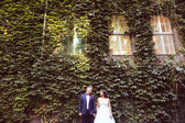 Bride and groom surrounded by ivy leafs — Stock Photo