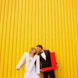 Bride and groom posing against a yellow wall, holding L and M letters — Stock Photo #74225421