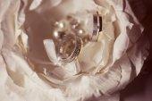 Close up of beautiful wedding rings — Stock Photo
