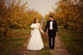 Bride and groom holding hands on a path — Stock Photo